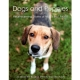 DOGS AND PUPPIES - AN INTERACTIVE BOOK-0