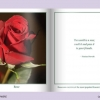 FLOWERS - AN INTERACTIVE BOOK-312