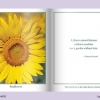 FLOWERS - AN INTERACTIVE BOOK-315
