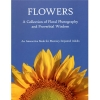 Flowers: an interactive book for memory impaired adults