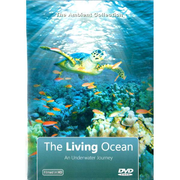 Alternative television for Alzheimer's | The Living Ocean DVD