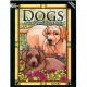 DOGS STAINED GLASS COLORING BOOK-0