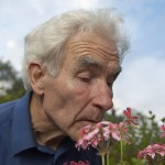 Alternative therapies for Alzheimer's and dementia