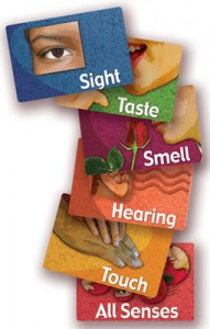 Sensory Stimulation for Alzheimer's | Sharpen Your Senses card game