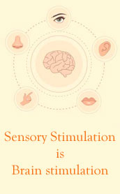 Our sense organs are extensions of our brain. Sensory stimulation is brain stimulation.
