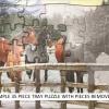 HORSE STREAM - 35 Piece Tray Puzzle-2279