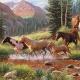 HORSE STREAM - 35 Piece Tray Puzzle-0
