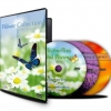 THE FLOWER COLLECTION - DVD-0
