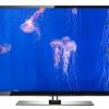 JELLY FISH - DVD-2324