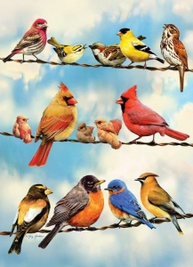 Alzheimer's and dementia gifts - puzzles. This is a large piece puzzle showing a variety of birds