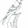 Seasonal Birds Adult Coloring Book for Seniors - sample page