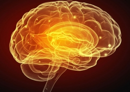 Scientists find electrical brain stimulation improves memory