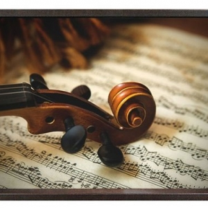 Audio Art - Classical & Instrumental/Violin | The Four Seasons by Vivaldi